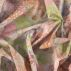 Cotton grey w digital printet flowers